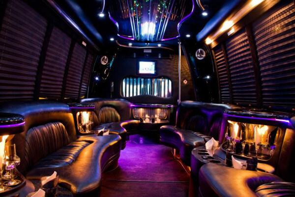 15 Person Party Bus Rental Minneapolis