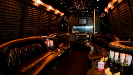 15 Passenger Party Bus Eagan Mn Interior